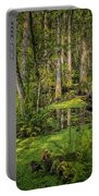 Into The Swamp Portable Battery Charger