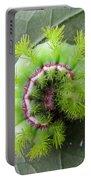 Io Caterpillar Portable Battery Charger