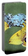 Io Moth Automeris Io Adult Males Portable Battery Charger