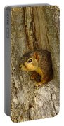 iPhone Squirrel In A Hole Portable Battery Charger