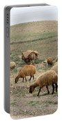 Iran Sheep Portable Battery Charger