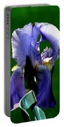 Iris Blues Portable Battery Charger