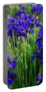 Iris In The Field Portable Battery Charger