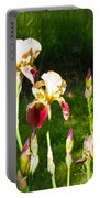 Iris In The Sun Portable Battery Charger
