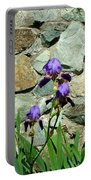 Iris Portrait Portable Battery Charger