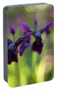 Irises Depth Portable Battery Charger