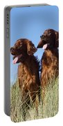 Irish Red Setter Dog Portable Battery Charger