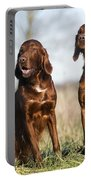 Irish Setters Portable Battery Charger