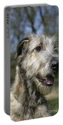 Irish Wolfhound Portable Battery Charger