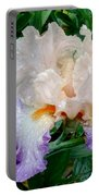 Irresistible Iris Portable Battery Charger
