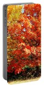 Is Autumn Already Portable Battery Charger