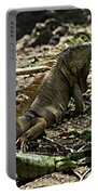 Island Lizards Four Portable Battery Charger