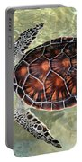 Island Turtle Portable Battery Charger