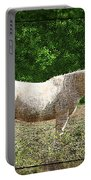 Itchy Horse Portable Battery Charger