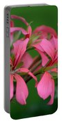 Ivy Geraniums Portable Battery Charger