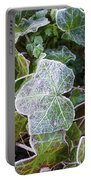 Ivy Leaves Portable Battery Charger