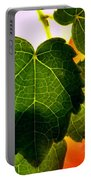 Ivy Light Portable Battery Charger