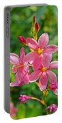 Ixia Flower Portable Battery Charger