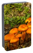 Jack Olantern Mushrooms 22 Portable Battery Charger