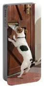 Jack Russell Terrier Gets Paper Portable Battery Charger