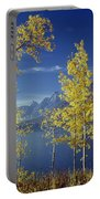 1m9206-jackson Lake And Aspens, Wy Portable Battery Charger
