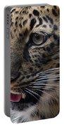 Jaguar-09498 Portable Battery Charger