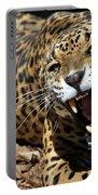 Jaguar Intensity Portable Battery Charger