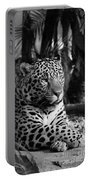 Jaguar Mono Portable Battery Charger