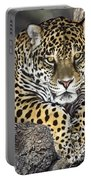 Jaguar Portrait Wildlife Rescue Portable Battery Charger by Dave Welling