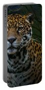 Jaguar Two Portable Battery Charger