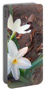 January 2014 Paper-whites In Bloom Portable Battery Charger