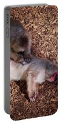 Japanese Macaque Portable Battery Charger