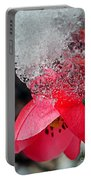 Ice Flower Portable Battery Charger