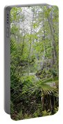Jean Lafitte National Preserve Swamp Louisiana Portable Battery Charger