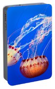 Jelly Dance - Large Jellyfish Atlantic Sea Nettle Chrysaora Quinquecirrha. Portable Battery Charger