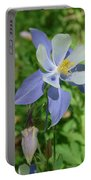 Jewel In The Glade  Portable Battery Charger