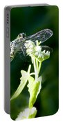 Jeweled Wings Portable Battery Charger
