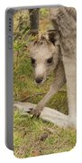 Joey Portable Battery Charger