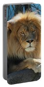 Joshua The Lion On His Rock Portable Battery Charger