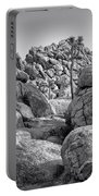 Joshua Tree 14 Portable Battery Charger