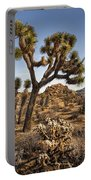 Joshua Tree 16 Portable Battery Charger