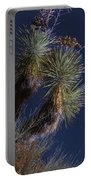Joshua Tree By Moonlight Portable Battery Charger