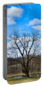 Joshua Tree Country Style Portable Battery Charger
