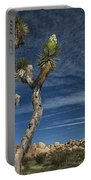 Joshua Tree In Joshua Tree National Park No. 279 Portable Battery Charger