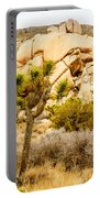 Joshua Tree National Park Skull Rock Portable Battery Charger