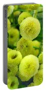 Joy Of Spring Portable Battery Charger