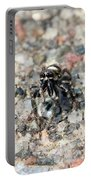 Jumping Spider Face On Portable Battery Charger