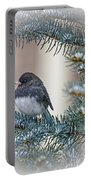 Junco In Pine Portable Battery Charger