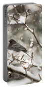 Junco In The Snow Portable Battery Charger