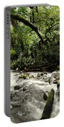 Jungle Flow Portable Battery Charger